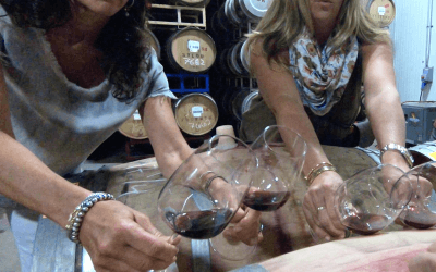 "New York wine client ""Sovare"" visits Sonoma…"