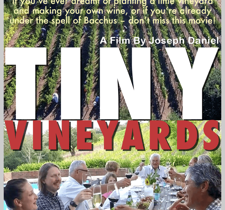Announcing two new Sonoma cinematic events with music, food, and wine…