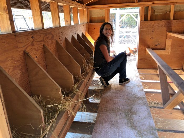 Cynthia checking out the conditions in the coop